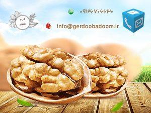 بنر گردو بادوم