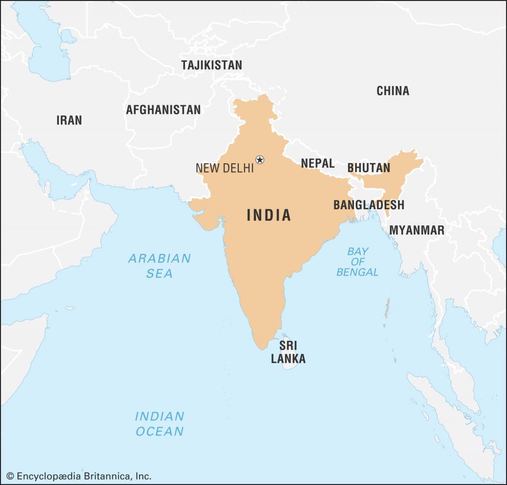 خرید گردو صادراتی برای هند